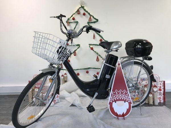 2-VAE-City-Bike