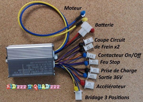 variateur contrôleur 36V 500W