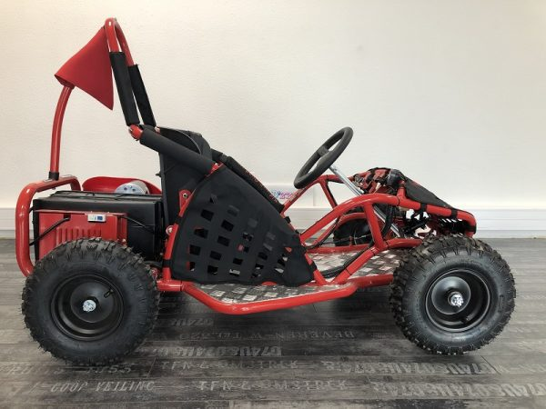 kart buggy cross 48V 1000W