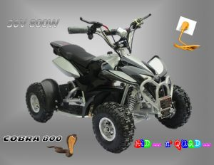 Pocket Quad électrique enfant 36V 800W Noir