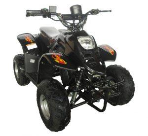 Quad électrique pour enfant Dinosaur Pro 36V 500W noir